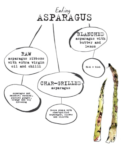 Tom Hunt Asparagus Mind Map