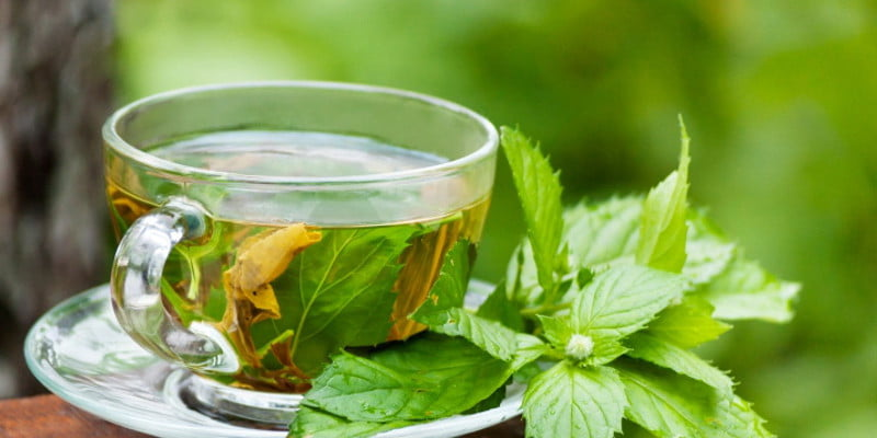 Take Healthy Route To Look Gorgeous And Fit With Teami 30 Day Detox Tea