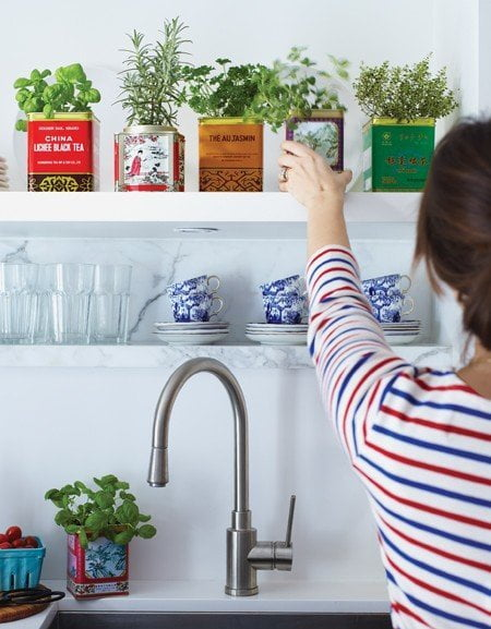 Growing Herbs in Vintage Tins via Apartment Therapy