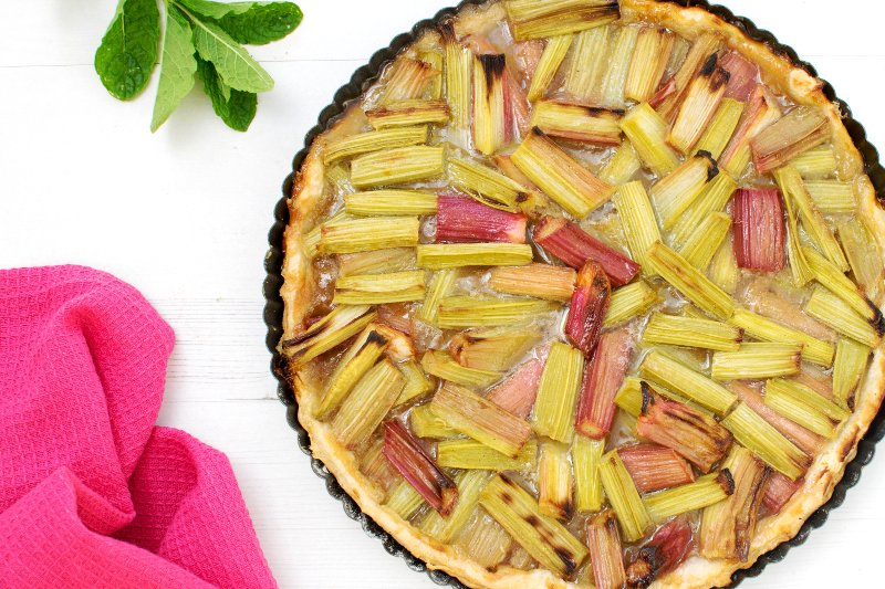 is rhubarb a fruit meat and fruit diet