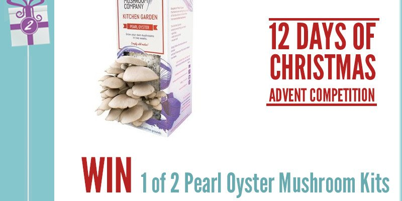 Advent Competition Day 2 - Win 1 of 2 Pearl Oyster Mushroom Kits