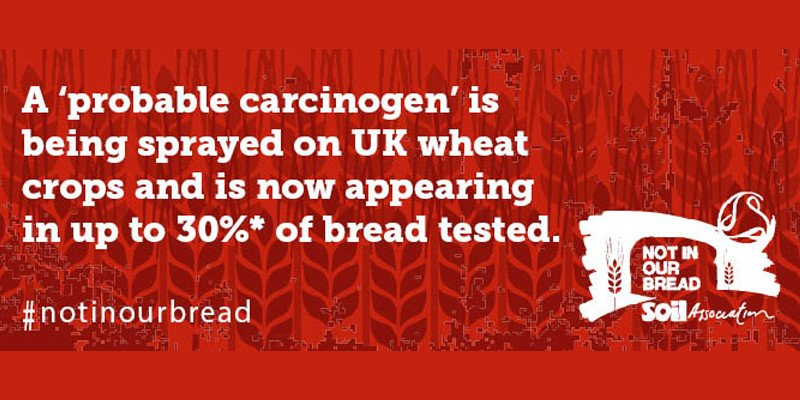 #notinourbread - Weedkiller Found In As Much As 30% of UK Bread