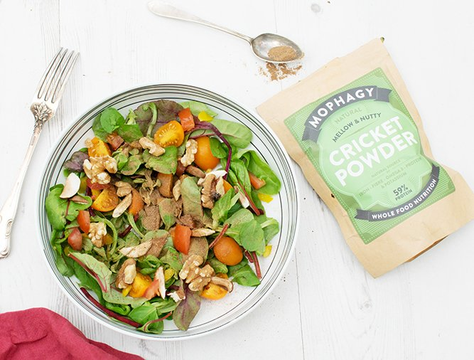 Cricket Powder Salad The Flexitarian