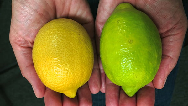 Tesco to Sell Perfect Green Lemons to Cut Down on Food Waste V6 H