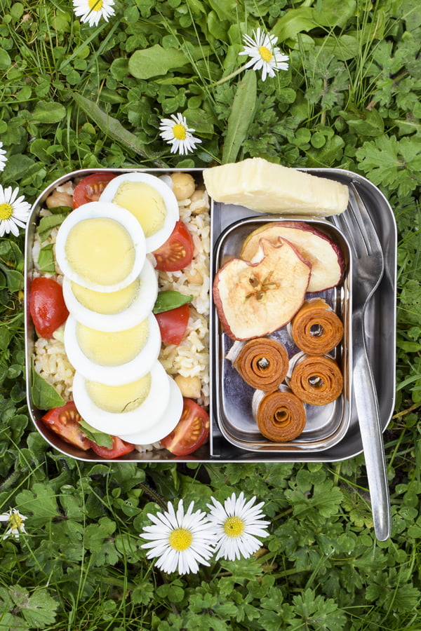 Fruit Leather Grass BioChef Arizona Sol Food Dehydrator © 2019 - Annabelle Randles : The Flexitarian : www.theflexitarian.co.uk