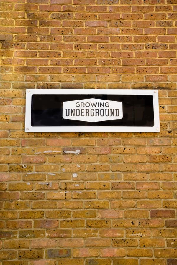 Growing Underground Sign