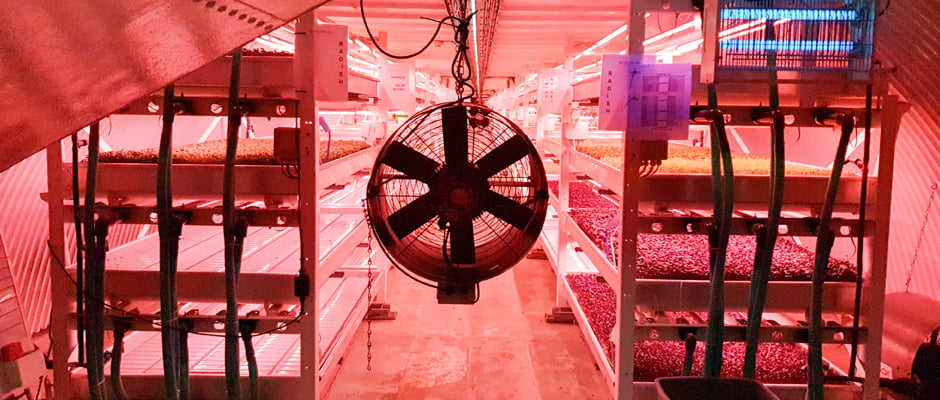 Growing Underground - London's First Underground Farm