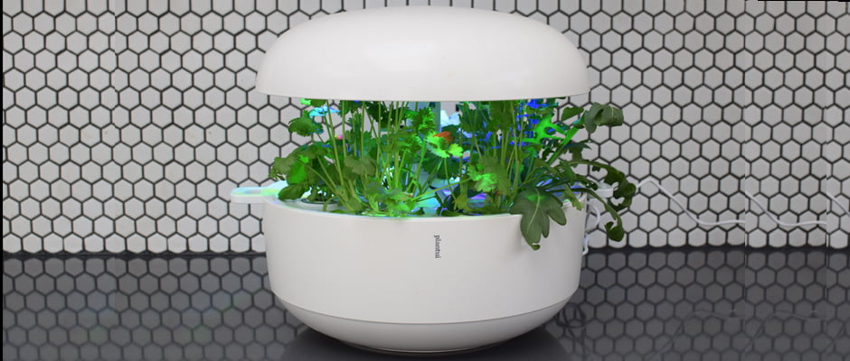 Review Plantui 6 Indoor Smart Garden v8